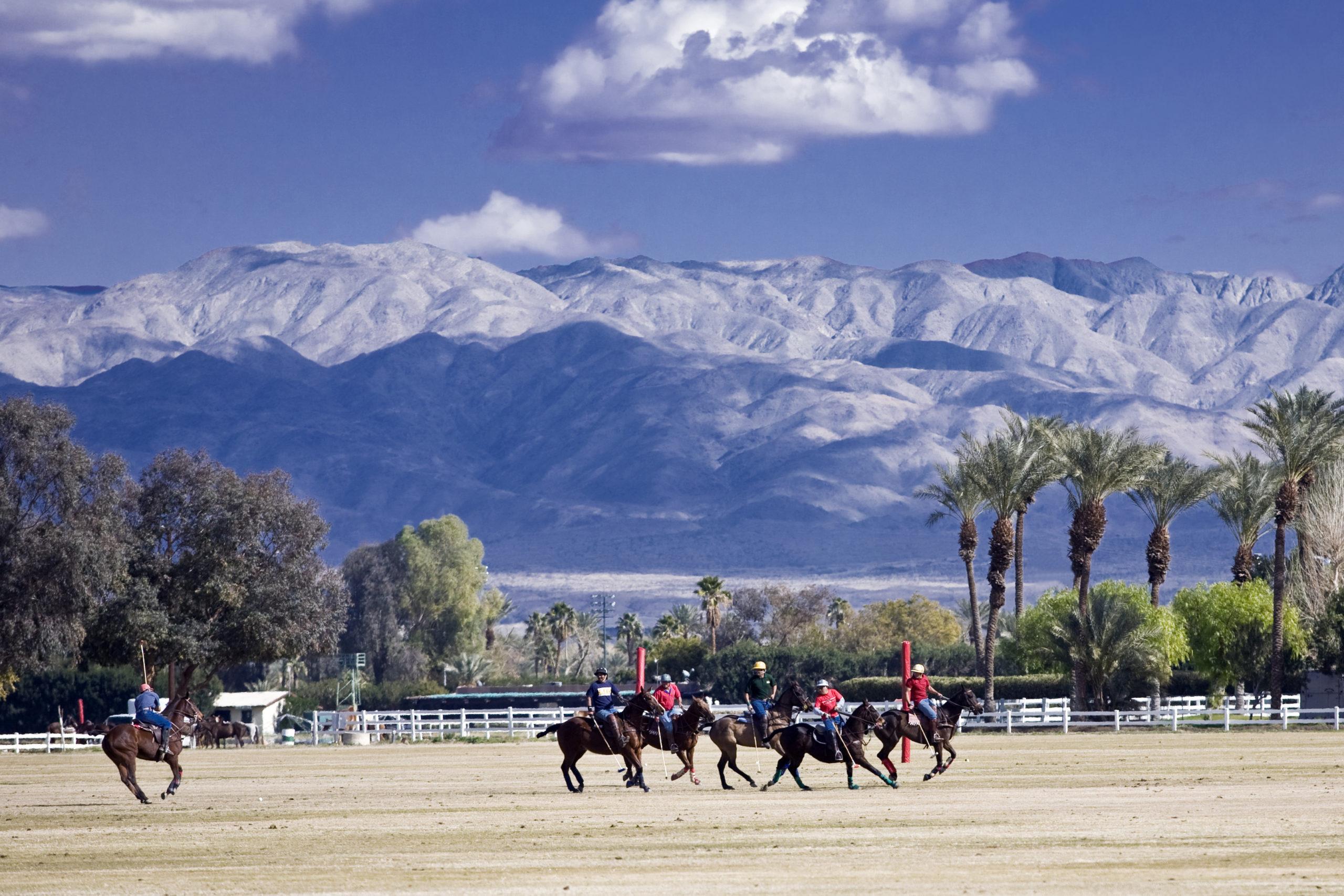 Polo players under a sunny winter sky in La Quinta, CA